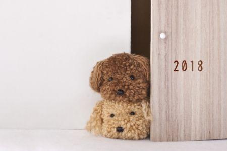 新年明けましておめでとございます!